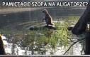 Pamiętacie szopa na aligatorze?