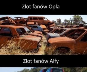 Zloty fanów