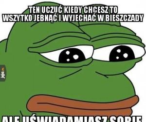 Pepe w Bieszczadach