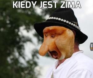 Typowy Janusz