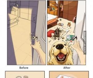 Moje życie przed i po kupnie psa