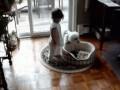Dziecko kontra pies