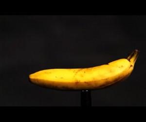 Banan vs nabój