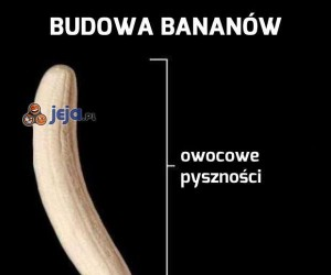 Budowa bananów