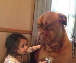 Zwierzaki są cudownymi towarzyszami dzieci