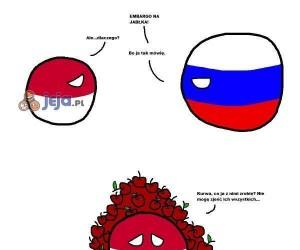 Polskie jabłka, to najlepsze jabłka