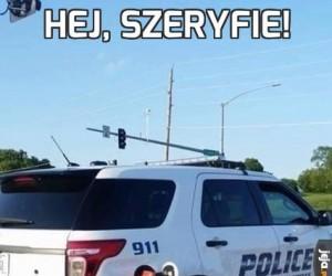 Hej, szeryfie!