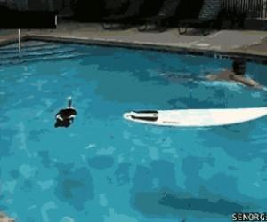 Wyjazd z mojego basenu!