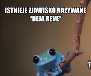 Deja Reve