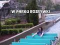 W parku rozrywki