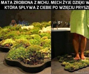 Dobry sposób by poczuć naturę