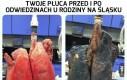 Wizyta na Śląsku