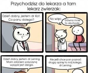 Zwierzęca klinika