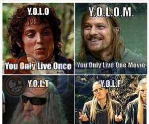 YOLOcepcja