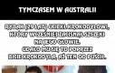 W Australii człowiek pobił krokodyla