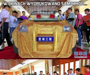 W Chinach wydrukowano samochód...