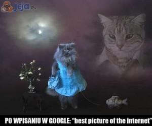 To są internety, tego nie ogarniesz