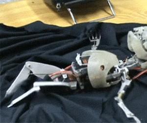 Przerażający robot niemowlak