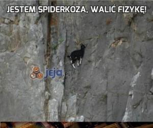 Jestem Spiderkoza, walić fizykę!