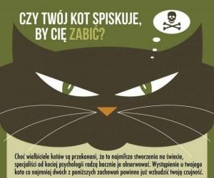 Czy Twój kot spiskuje, by Cię zabić?