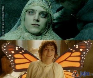 Frodo motylek