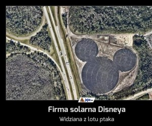 Firma solarna Disneya