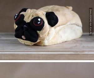 Jacyś chętni na chlebek z mopsa?