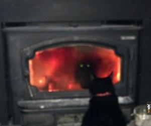Albo po prostu lubi się gapić w ogień