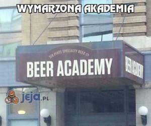 Wymarzona akademia