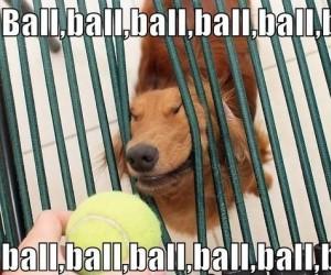 Piłka piłka piłka