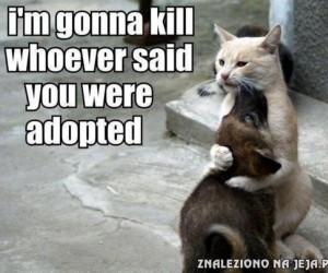 Zabiję każdego, kto twierdzi, że jesteś adoptowany
