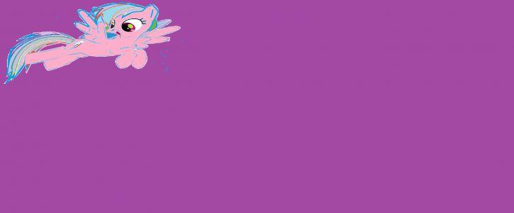 Purse Flower