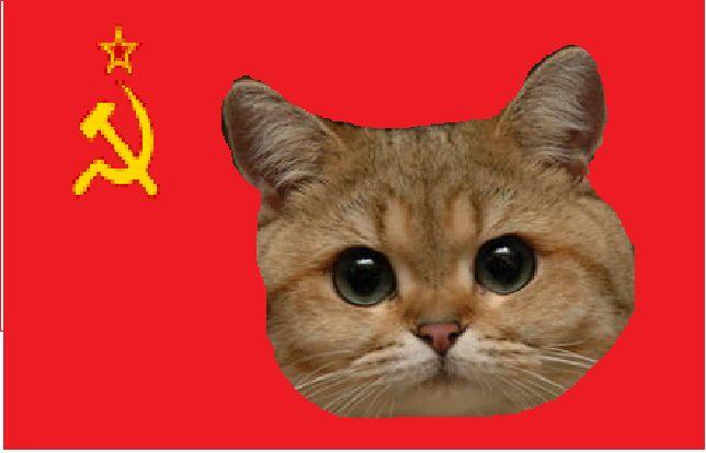 Komunistyczne Imperium Kotów