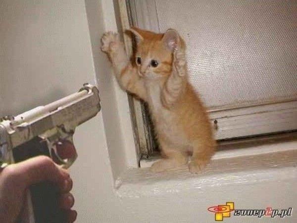 Nie zabijaj!