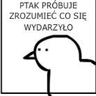 Avatar AftXzZxtcVcc7xTcfT77