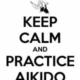 Avatar Aikido_team