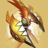 Avatar kokapup
