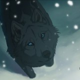 Avatar BlueSheWolf