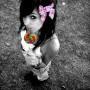 Avatar Lollipop_