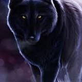 Avatar SkyLar_Wolf_Glalaxy