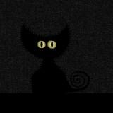 Avatar tarcza_w_ciemnosci