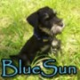 Avatar BlueSun
