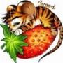 Avatar tygrysekamil