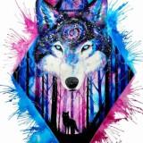 Avatar galaxywolf