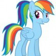Avatar RainbowDash