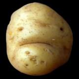 Avatar Kartoffel