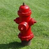 Avatar hydrant