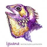 Avatar Iguanka1
