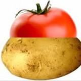 Avatar TomatoPotato