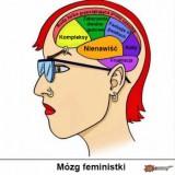 Avatar Typowa_feministka